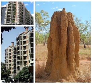 Biomimicry-SkyscrapersTermites
