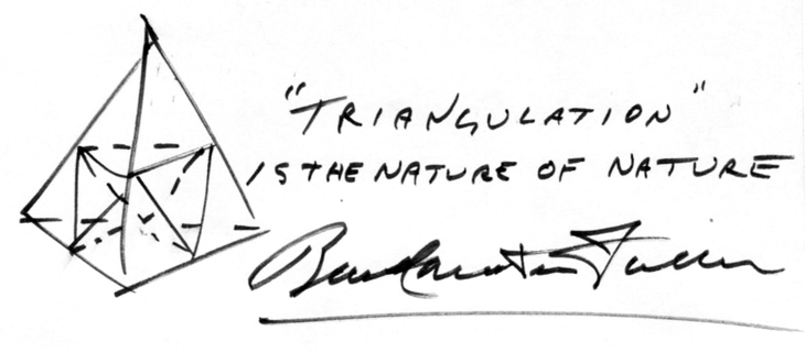 BuckminsterFuller-TriangulationIsTheNatureOfNature-B.W